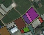 Google_farm
